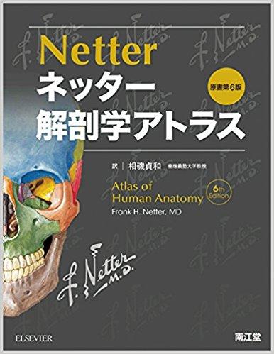 ネッター解剖学アトラス原書第6版