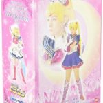 スペシャルミュージカル 美少女戦士セーラームーン メモリアルDVD-BOX 大山アンザ編(上)